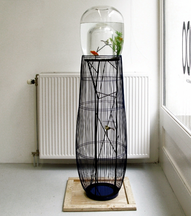 Aquarium and bird in a cage design - the concept duplex