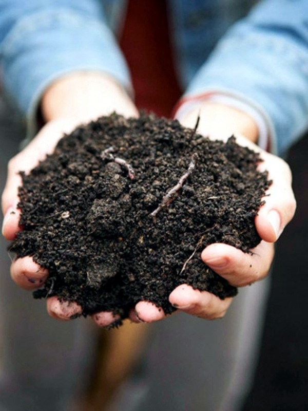 As compost? Ask yourself compost for the garden here!