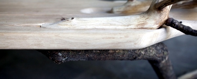 Bench design with natural wood looks like a fallen tree