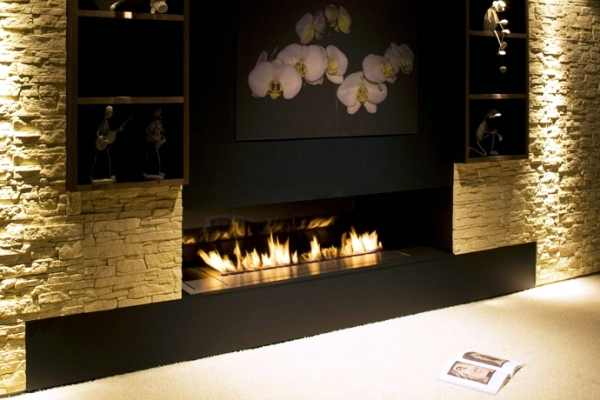 Bio Ethanol Fireplace In Top Quality Charming Safe