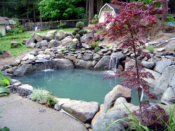 You Must Cover (PVC, Plastic, Rubber), Swimming Pool (fiberglass Or  Plastic), Concrete Or Clay Pools. There Are Different Sizes And Shapes.  With Pond Garden ...