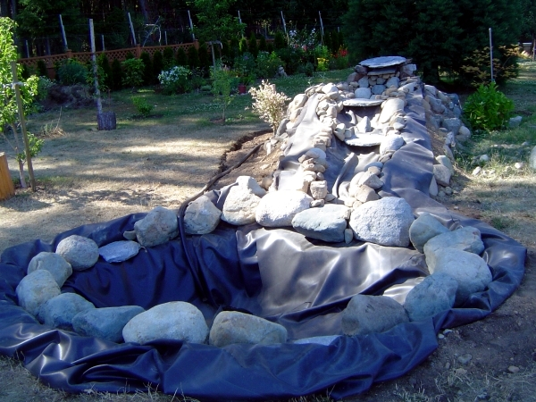 Build garden pond a water garden design options for Do it yourself pond