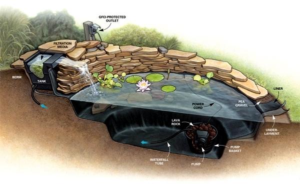 Build garden pond - a water garden design options