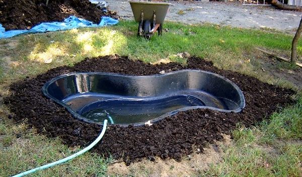 Build garden pond - a water garden design options