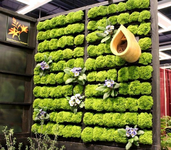 Build your own vertical garden - do it yourself projects for home
