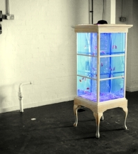 cabinet-design-as-a-unique-combination-of-cabinet-and-aquarium-0-2121828440