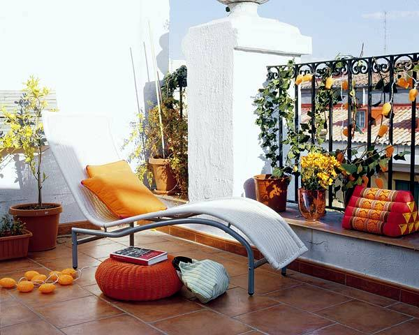 Climbing plants on balconies and terraces screening and for Indoor balcony decorating ideas