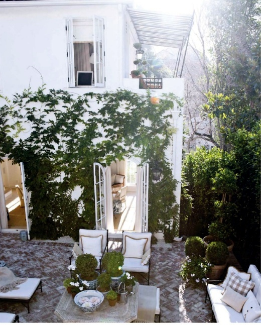 Climbing plants on balconies and terraces - screening and greening