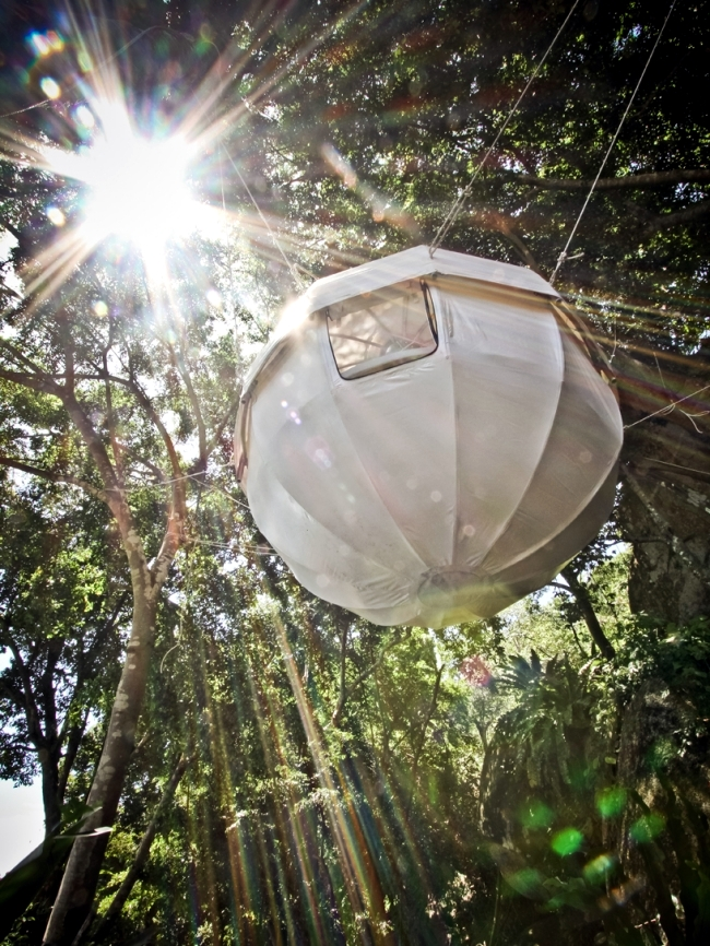 Cocoon Tree - A Luxury Tree House tent hanging bed combination