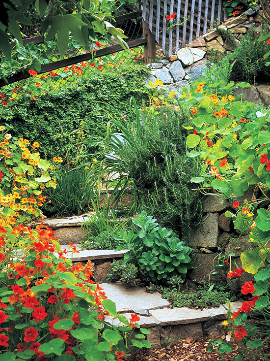 Creating a garden on a slope Ideas and optimal solutions ...