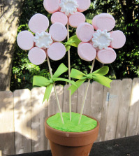 creative-mother39s-day-gift-by-your-own-flower-from-marshmallows-0-491000854