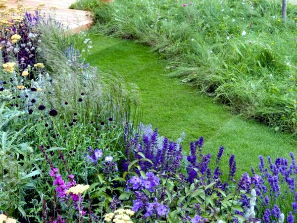 Eco-friendly living - Tips for Conservation and Landscaping