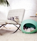 ensure-comfort-for-the-four-legged-friend-furniture-for-pets-0-24289117