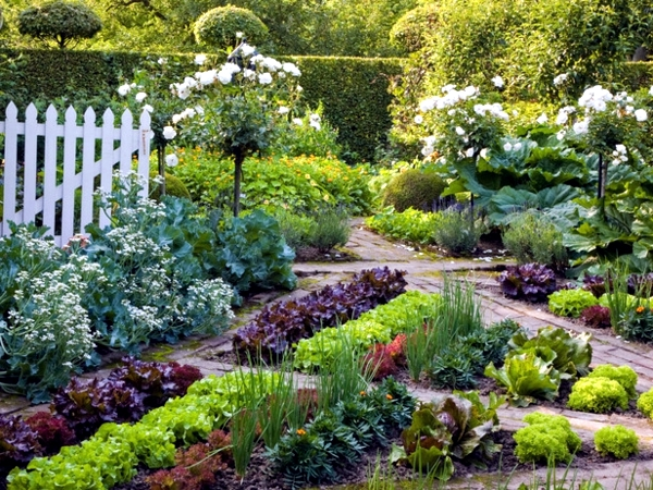 Fast garden planning in three easy steps