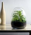 fast-terrarium-instructions-put-on-a-mini-garden-0-1342914369