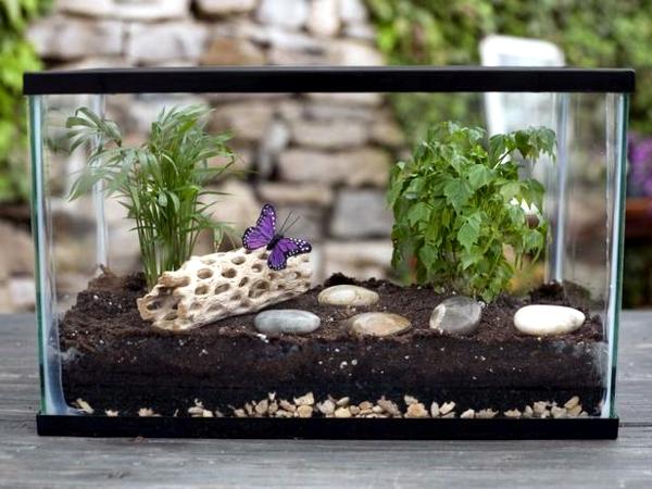 Fast Terrarium Instructions Put On A Mini Garden