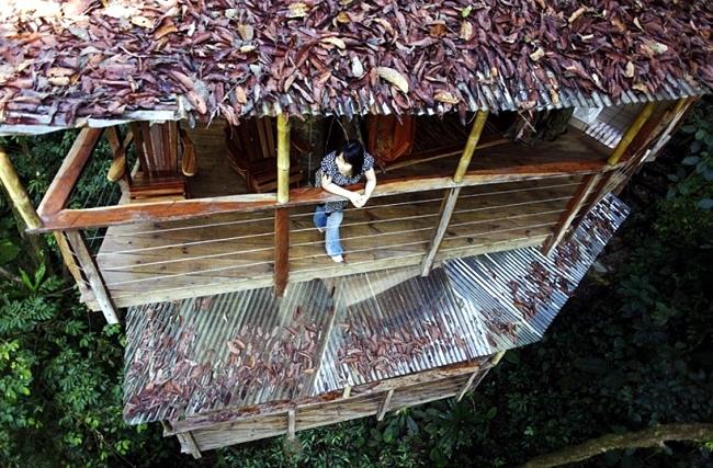Finca Bellavista, Costa Rica offers accommodation in tree house