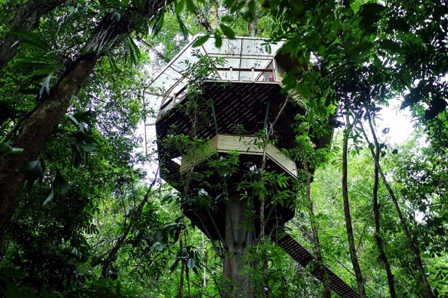 Finca Bellavista, Costa Rica offers accommodation in tree house