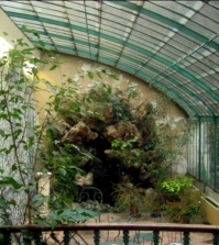 find-a-conservatory-up-which-plants-a-place-there-0-395374718