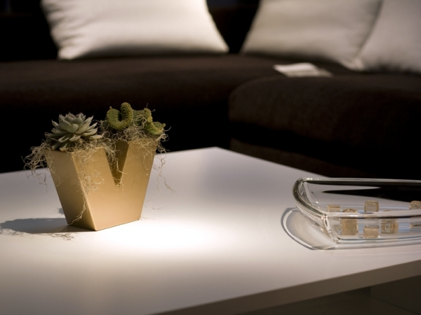 Flower pots and planters in exclusive design enliven the living room