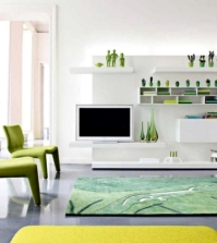 fresh-colors-in-the-living-room-20-living-ideas-and-tips-in-green-and-white-0-1591701833