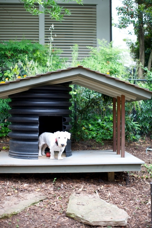 Fun for dogs in the garden tips for pet friendly garden for Garden designs for dogs