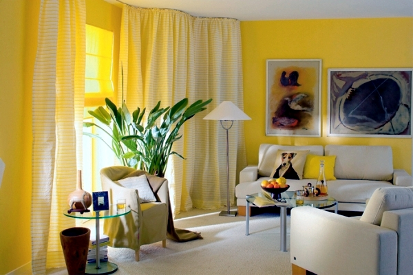 Yellow Room With Wallpaper Accent Wall