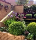 gardening-like-the-pros-trends-in-horticulture-0-772342860