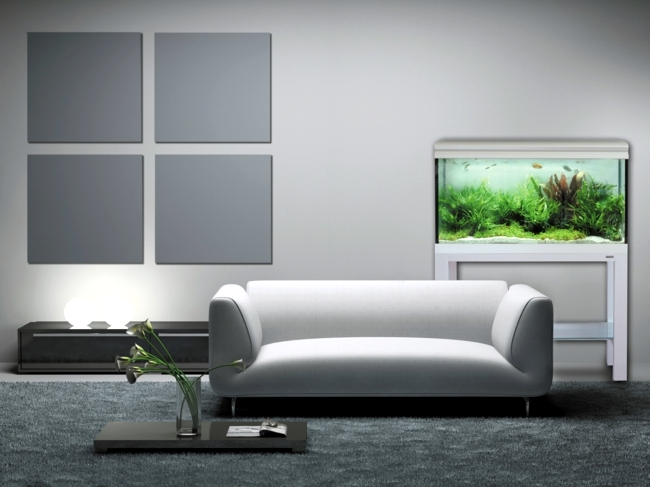 Get the sea into your living room - Nano Aquarium