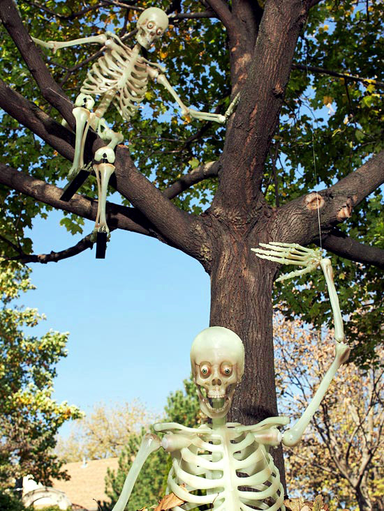 Halloween garden decorations ideas with skeletons, skulls and bones