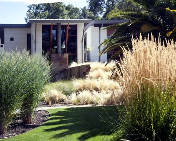 https://www.ofdesign.net/wp-content/uploads/images/hardy-plants-in-the-garden-design-ideas-with-pampas-grass-1-771907004.jpg