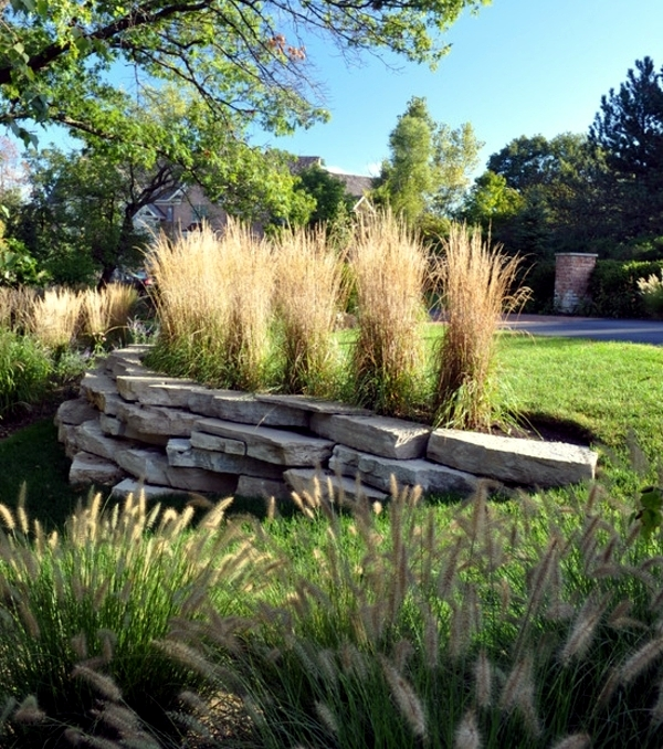 Hardy Plants In The Garden   Design Ideas With Pampas Grass