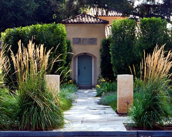 Hardy plants in the garden - design ideas with pampas grass