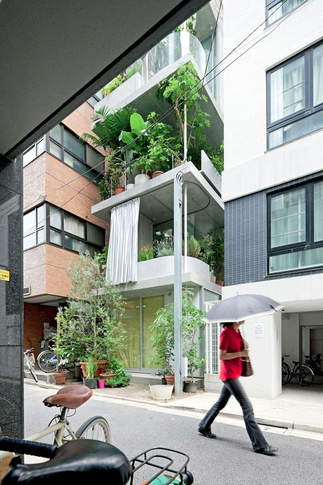 House with glass facade and vertical garden on the balcony