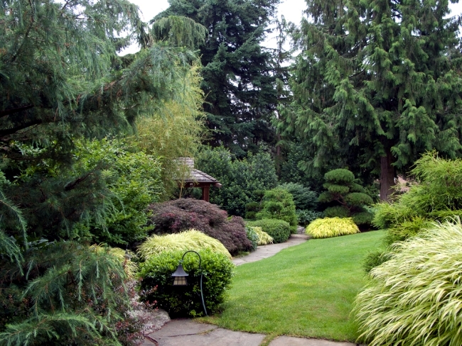 Ideas For Individual Garden Path Design A Highlight In