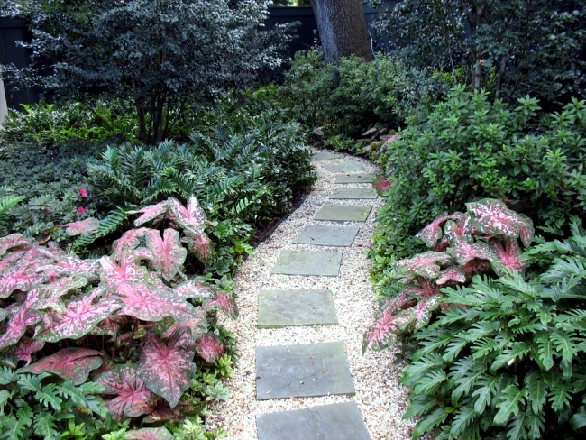 Ideas for individual garden path design a highlight in the