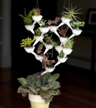 ikebana-the-art-and-the-aqueduct-system-characterize-modern-planters-0-210750467
