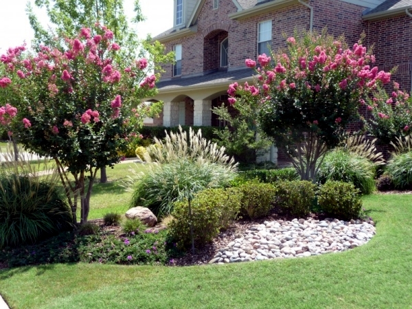 Creating a front yard