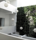 integrate-the-green-wall-or-oranische-elements-in-the-architecture-0-796914146