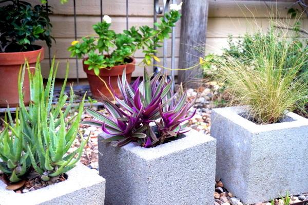 Maintain the garden in autumn - enjoy a green landscape more