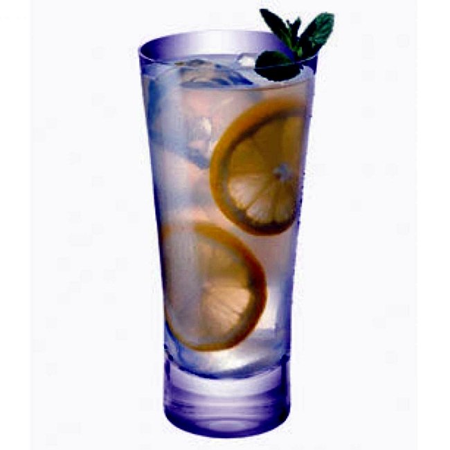 Mini bar - you spoil your guests with gin cocktails / incl Recipes /