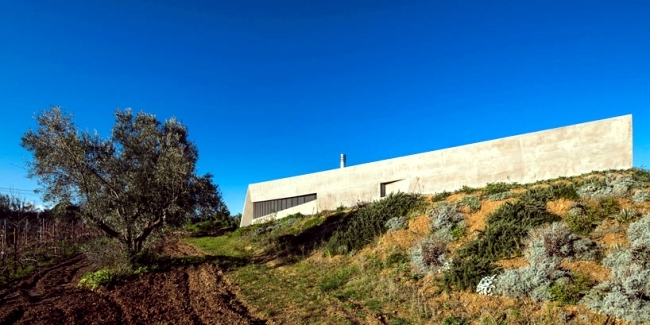 Modern concrete house in Greece blends with the landscape