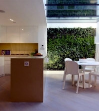 modern-house-renovation-in-london-ground-glass-for-bright-basement-0-282799778