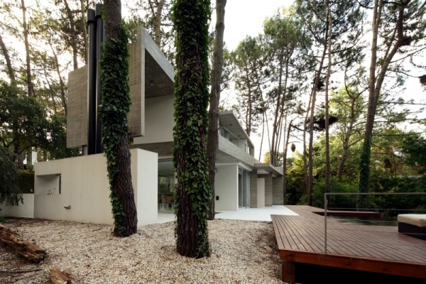 Order and simplicity characterize a modern cottage in the woods