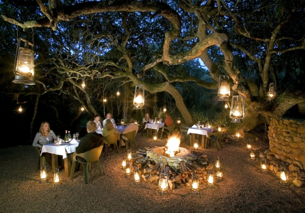 Organize adventure holidays - tips for Safari and Travel in South Africa