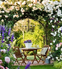 pergola-and-trellis-in-the-garden-stylish-ideas-for-garden-design-0-1856193929