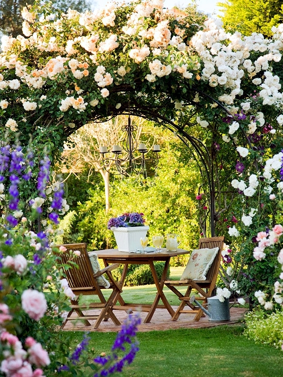 pergola and trellis in the garden stylish ideas for
