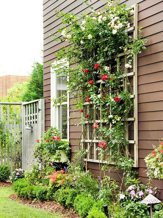 Pergola and trellis in the garden - Stylish Ideas for Garden Design