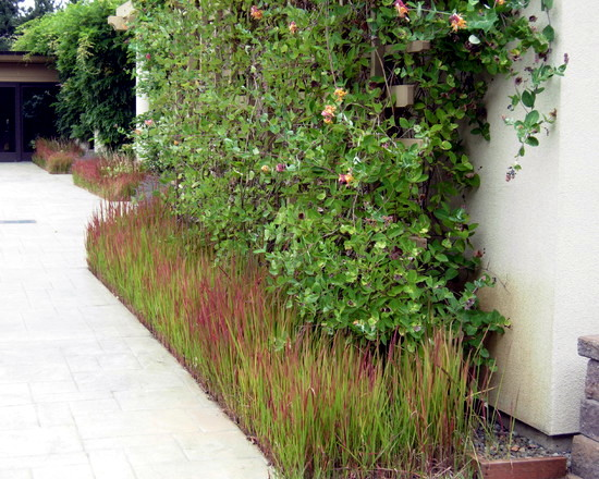 Planting ideas and tips for narrow planting strips in the for Gartenanlage gestalten