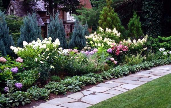 Planting ideas and tips for narrow planting strips in the for Narrow flower bed ideas